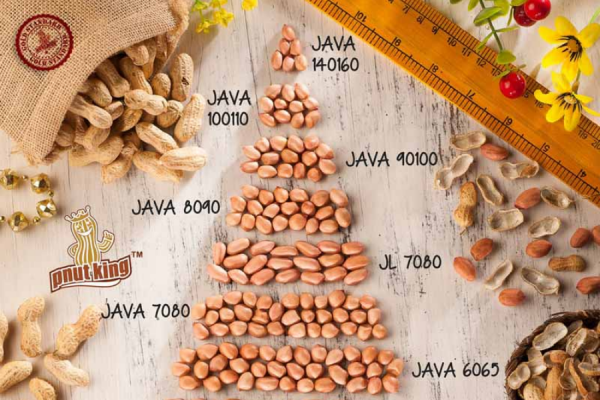 Indian Groundnuts are Available in Different Varieties