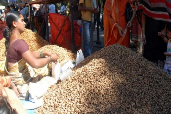 Agencies fail to procure groundnut seeds