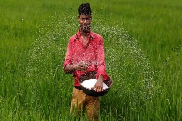 Kharif MSPs Increased Marginally; Paddy up 3.7%, Tur 2%