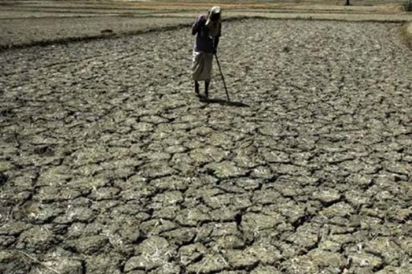 27% fall in sowing, Centre calls states� meet today on threat of drought