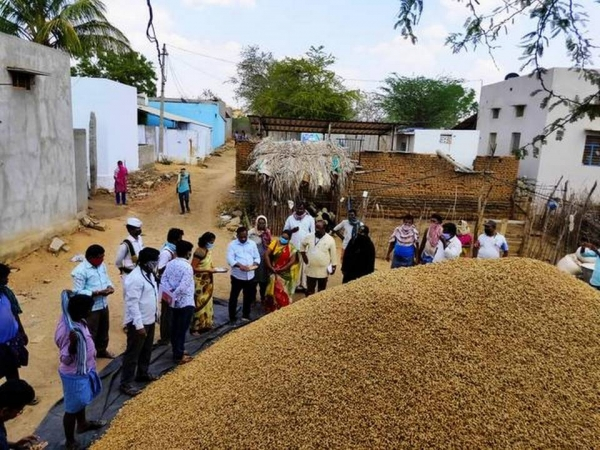 Move to sell groundnut seeds through Rythu Bharosa Kendras