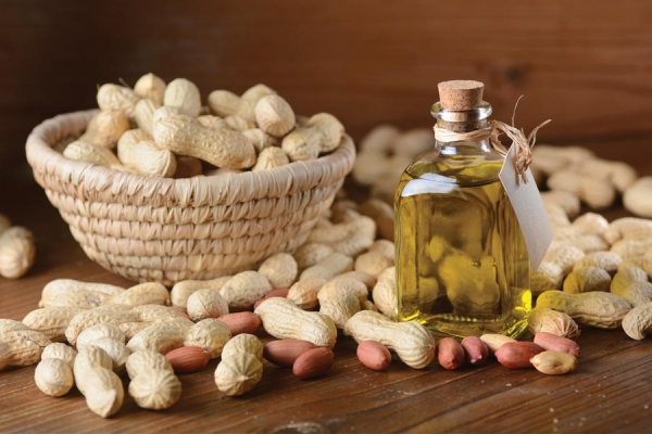 Gujarat millers seek govt support to popularise groundnut oil