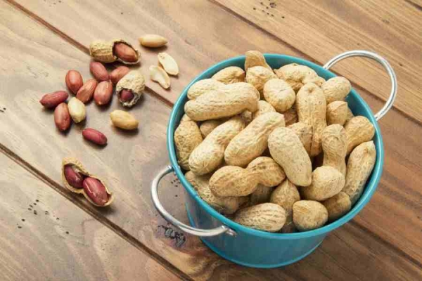 High oleic groundnuts to enter Indian markets soon