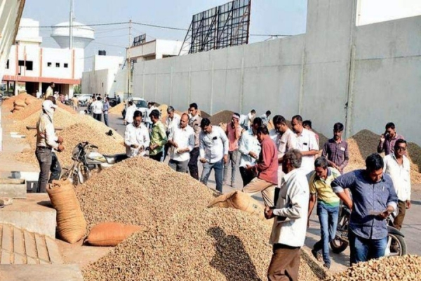 Three arrested for groundnut adulteration; Cong seeks probe